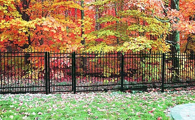 Black Aluminum 6' high fence